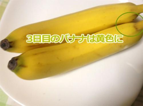 3日目バナナの色は普通のバナナの黄色に