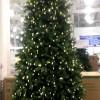 コストコのクリスマスツリーを初め、デコレーションなど多彩に楽しめる!
