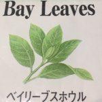 マコーミック・ベイリーブス(月桂樹の葉)は、1年以上使用してもまだ効果が持続!